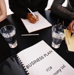 бизнес_план_флокирование_biznes_plan_flokirovanie